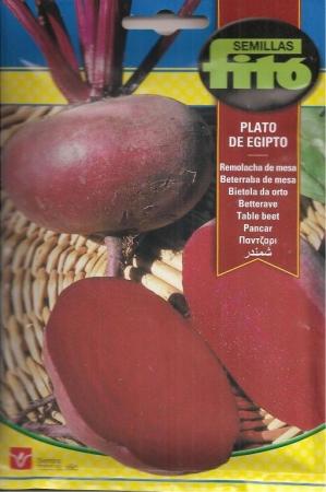 REMOLACHA PLATO DE EGIPTO (13 gr.).