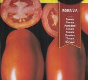 TOMATE ROMA V. F. (3 gr. - Cerca de 750 Semillas)