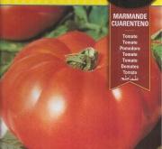 TOMATE MARMANDE CUARENTENO (3 gr. - Cerca de 750...