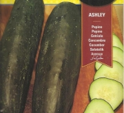 PEPINO ASHLEY (10 gr.).