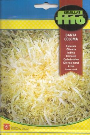 ESCAROLA SANTA COLOMA (8 gr.)