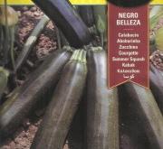 CALABACIN NEGRO BELLEZA ó BLACK BEAUTY