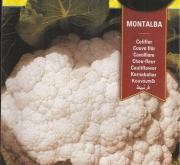 COLIFLOR MONTALBA (4 gr.).