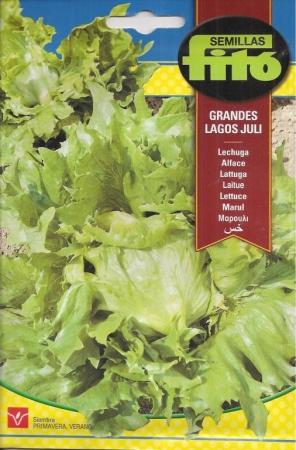 LECHUGA GRANDES LAGOS JULI