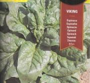 ESPINACA VIKING (20 gr.).
