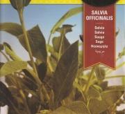 SALVIA (2 gr. - Cerca de 260 Semillas).