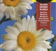 MARGARITA GRANDE-ALASKA BLANCA (3 gr.).