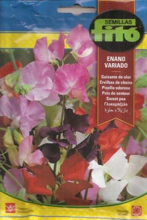 GUISANTE DE OLOR ENANO VARIADO
