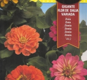 ZINIA GIGANTE FLOR DE DALIA VARIADA (4 gr.).