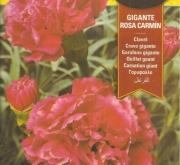 CLAVEL GIGANTE ROSA CARMIN (0,8 gr.).