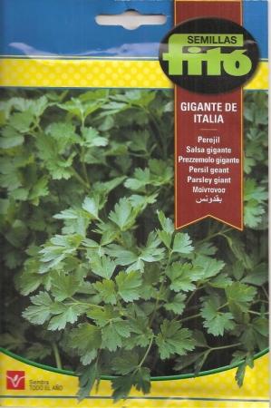 PEREJIL GIGANTE DE ITALIA (20 gr.).