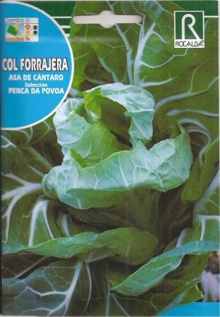 COL ASA DE CANTARO - Penca Da Povoa (10 gr.).