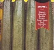 CALABACIN DYNAMIC F1 (40 Semillas)