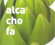 ALCACHOFA VERDE M