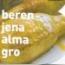 BERENJENA ALMAGRO M11