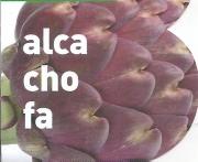 ALCACHOFA MORADA M