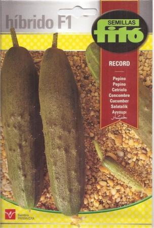 PEPINO RECORD F1 (60 semillas)