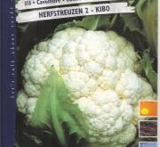 COLIFLOR HERFSTREUZEN 2 - KIBO (Cerca de 6 gr.).