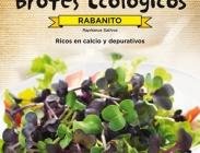 Semillas para Germinados y de Flores Comestibles
