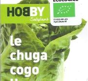 LECHUGA COGOLLO ECOLÓGICA MSE6