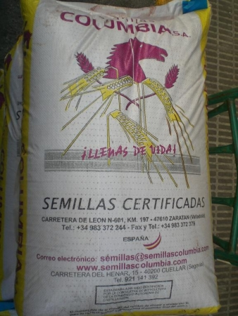 TRITICALE TRUJILLO R-2 (40 Kgr.).