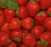 mini fresas