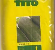 CALABACIN BERULA F1 (1000 Semillas).