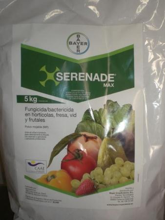 SERENADE MAX (5 Kgr.).