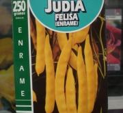 JUDIA FELISA