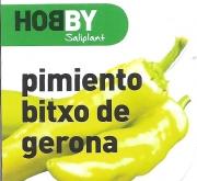 PIMIENTO BITXO DE GERONA M11