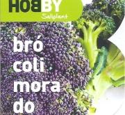 BROCOLI MORADO MS12