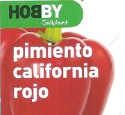 PIMIENTO CALIFORNIA ROJO M11