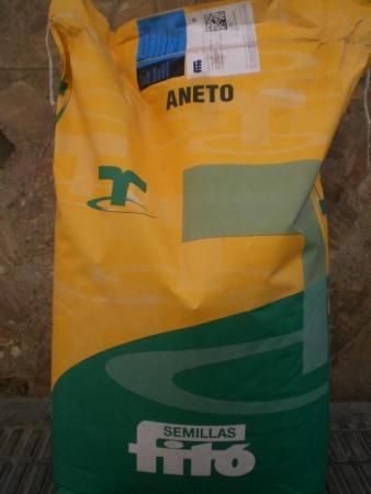 SORGO ANETO (25 Kgr.).