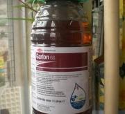 GARLON GS