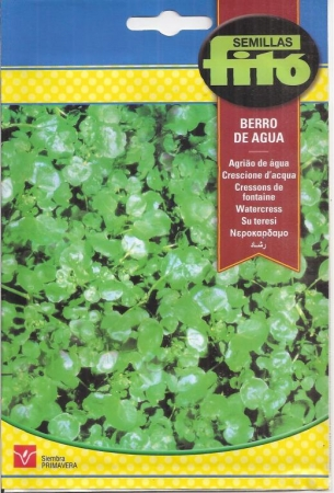 BERRO DE AGUA