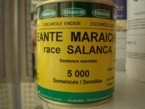 ESCAROLA GIGANTE HORTELANA SALANCA Pildora Sphera (5000 semillas)