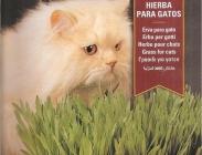 Semillas para Purga y Alimento de Macotas