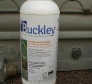 BUCKLEY (1 l.).