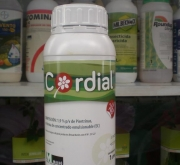 CORDIAL (1 l.).