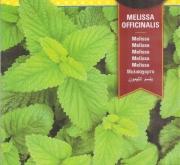 MELISA (0,25 g)