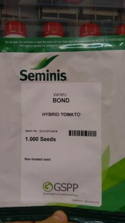 TOMATE BOND F1 (1000 Semillas)