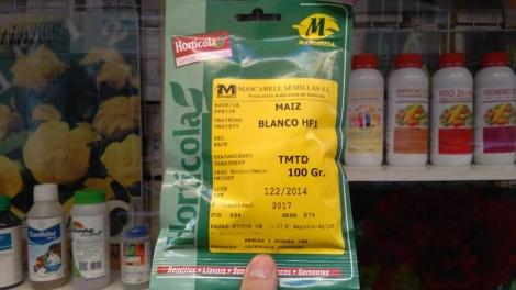 MAIZ BLANCO HF1