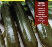 CALABACIN NEGRO BELLEZA ECOLOGICO