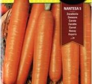 ZANAHORIA NANTESA 5 ECOLOGICA (2 gr.).