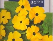 Semillas de Flores Trepadoras y Flor Seca