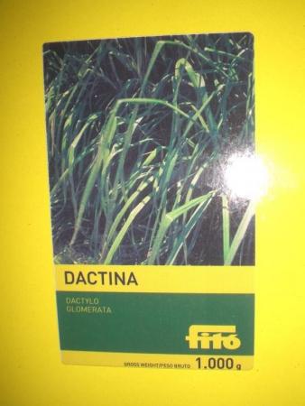 DACTILO GLOMERATA DACTINA (1 Kgr.).