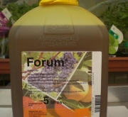 FORUM (5 l.).
