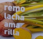 REMOLACHA DE MESA AMARILLA MS12
