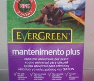 EVERGREEN MANTENIMIENTO PLUS (2 Kgr.).