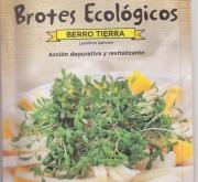 BERRO DE TIERRA ECOLÓGICO PARA BROTES (14 gr.).